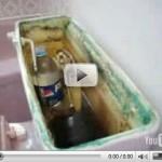 Économiser de l'eau de votre toilette