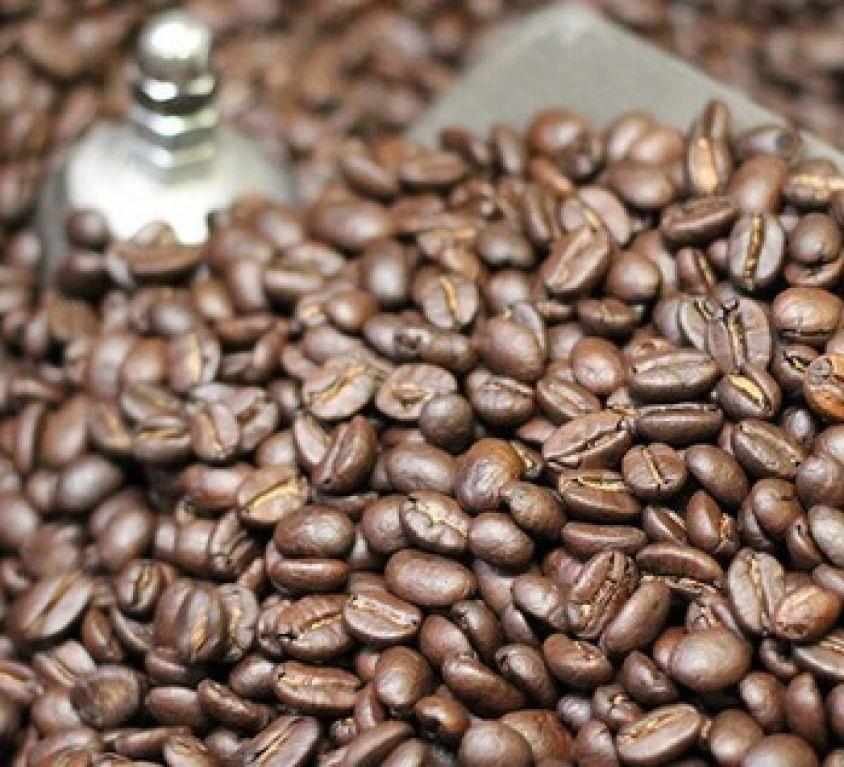 Les meilleurs programmes de récompenses café du Québec